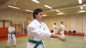 Edvin tränar Sanchin