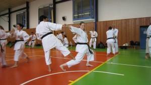 Bunkai-träning