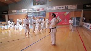 Saiko Shihan undervisar