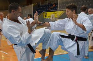 Mark Shihan från England tränar med Doris Shihan från Schweiz.