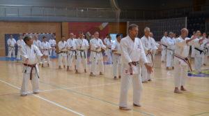 Saiko Shihan och Hanshi De Jong undervisar kata Tensho.