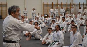 Saiko Shihan undervisar kata Sanchin.